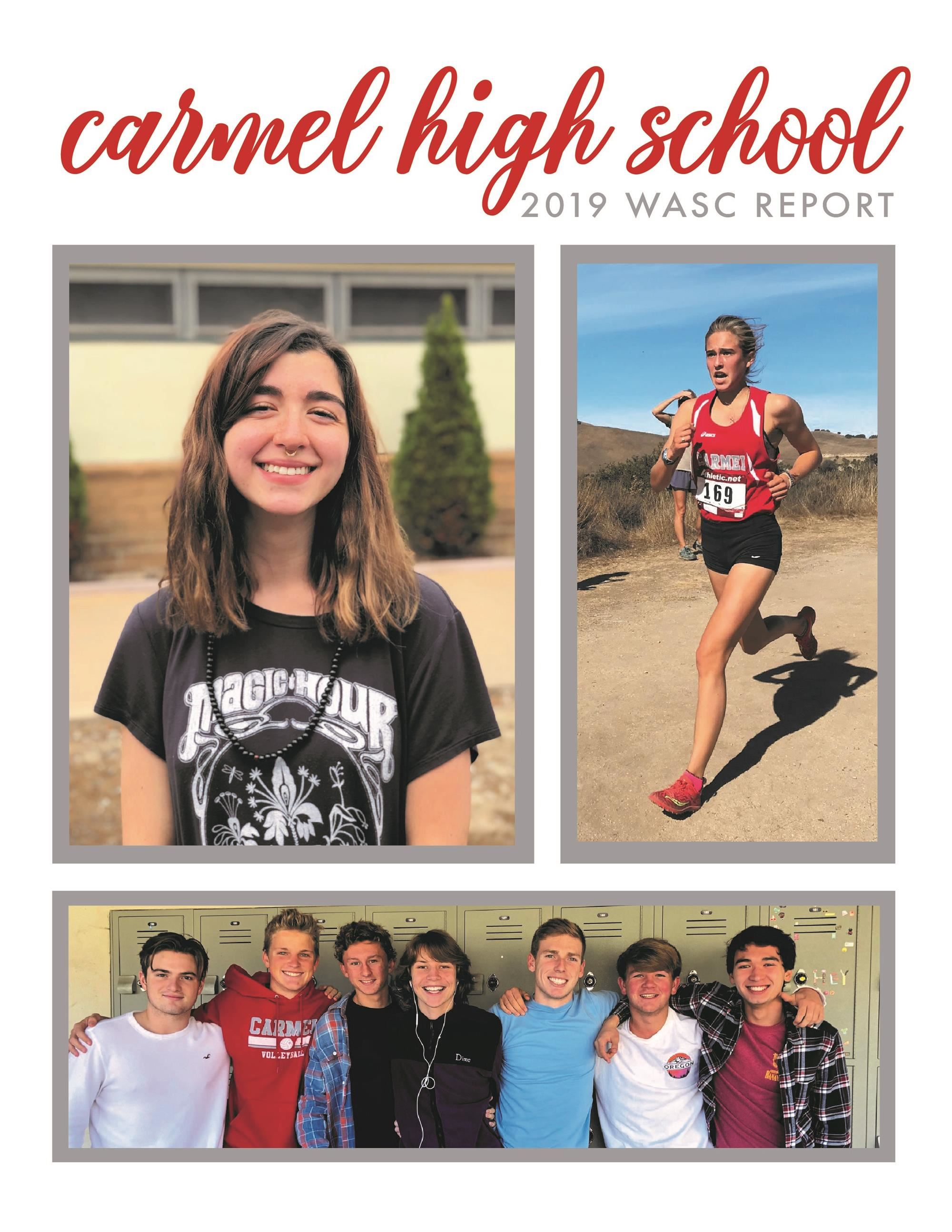 CHS WASC Report 2019
