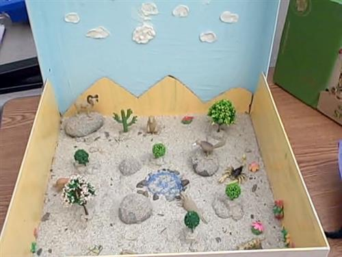 2nd grade river   room 13 u0026 39 s biome projects
